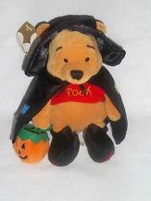2000 Disney Store Winnie the Witch Pooh Bear Plush Bean Bag Halloween Stuffed