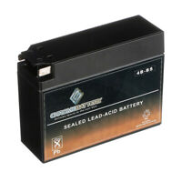 YT4B-BS High Performance AGM Motorcycle Battery for 2003-2007 Yamaha TTR 90E