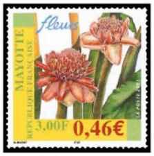 Timbre Flore Mayotte 107 ** année 2001 lot 22646