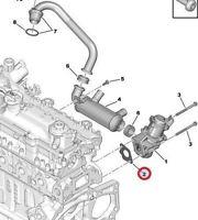 GENUINE PEUGEOT 206 207 107 307 407 1007 PARTNER EGR VALVE SEAL / GASKET