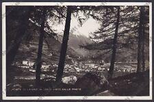 BRESCIA PONTE DI LEGNO 77 PINETE Cartolina VIAGGIATA 1934 REAL PHOTO