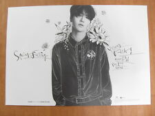 YESUNG (SUPER JUNIOR) - Spring Falling [OFFICIAL] POSTER K-POP *NEW*
