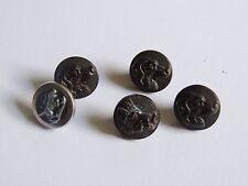 5 boutons de vénerie / chasse, chien & sanglier. Collection.