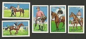 Horse racing Equestrian Sport Jockey Fab card LOT