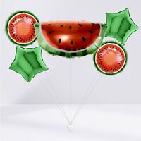 IDAM Balloons Winter Cooler Bundle Party Decoration Watermelon Fruit