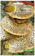 CHAGA BIRCH FUNGUS ORGANIC FUNGI MYCELIUMGROW OWN MUSHROOM KIT SEEDS SPORE PACK