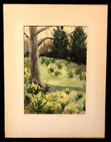 Vintage Original Watercolor Landscape Painting Ellen Clark Signed Daffodidils