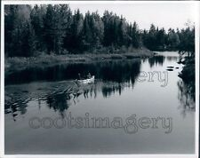 1969 Canoe on Basswood River Minnesota Press Photo