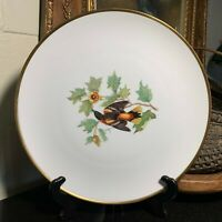 """Hutschenreuther Selb Audubon 13 3/8"""" Baltimore Oriole Charger Bavaria Germany"""