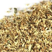 Elder Flower (Sambucus nigra) - dried herb FREE SHIPPING - 1 oz - 1 lb