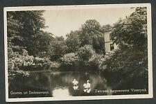 Groeten uit Dedemsvaart  Zwanen Burgemeester Visserpark