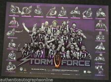 Prints Melbourne Storm NRL & Rugby League Memorabilia