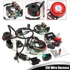 Completo Elettric Accensione Motore Cablaggio CDI Due Fori Per ATV QUAD 50-125CC