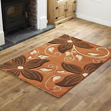 Large Soft Terra Brown Stylish Rug Flowers Design Area Rugs 160x230cm