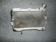 Suzuki LTR450 LTR 450 Radiator Rad Cooler Engine Motor