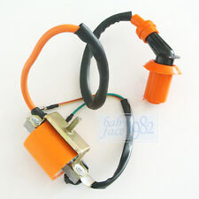 Ignition Coil Fit PitBike ATV Scooter Motorcycle TAOTAO SDG SSR Coolster GY6 50
