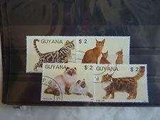 - GUYANA - FAUNE - chats- 1987  -