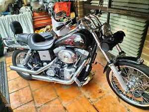 Project bike Harley Davidson 2004 White Dyno Perfect condition