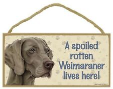 Weimaraner- A Spoiled Rotten-Xxx-Lives Here Wood Sign/Plaque 5 X 10