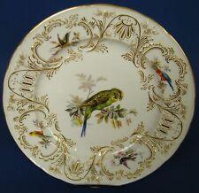 Aussergewöhnlicher Meissen Zierteller - Vogelmalerei - 19. Jhdt - #14293