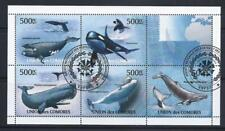 KL5978 2011 500F Comoros Souvenir Sheet of 5 Diff. Sealife Whales Orca & Others