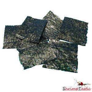 ShrimpTastic Algen Blätter für Garnelen, Krebse und Schnecken / Futter / 6 Stück