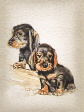 DACHSHUND CHARMING WIRE HAIRED DOG GREETINGS NOTE CARD TWO BEAUTIFUL PUPPIES
