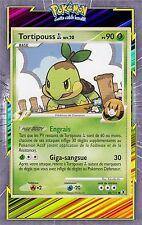 Tortipouss GL-Platine 02: Rivaux Emergeants-85/111-Carte Pokemon Neuve Française