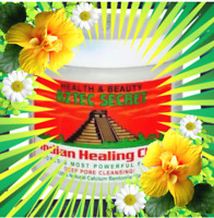 120g Aztec Indian Healing bentonite Caly Deep Cleansing Mask Masks Skin care
