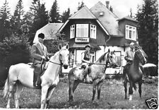 """AK, Braunlage Harz, Café und Reitschule """"Haus Harzfried"""", Pferde, um 1962"""