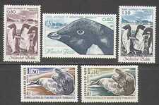 FSAT/TAAF 1981 Seals/Penguins/Birds/Marine/Nature/Wildlife 5v set (n23259)
