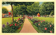 JOHNSON PARK, SALEM, N.J. NEW JERSEY. OCTAGON(RED BLDG) LAW OFFICE OF JOHN JONES