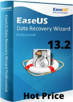 EaseUS Data Recovery Wizard v13.2   Professional Lifetime License   Hot Price