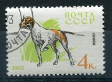 TIMBRE CHIEN POINTER