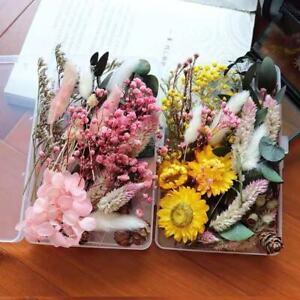 1 Box Getrocknete Blumen DIY Aroma Basteln Trockenblumen Schmuck Epoxidharz Deko