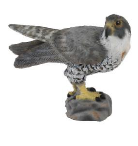 Collecta Animal Toy / Figure Peregrine Falcon