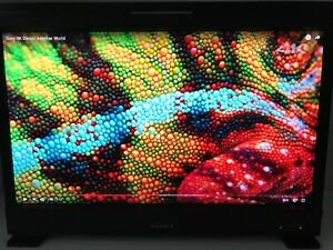 """Sony BVM-E250A 25"""" Trimaster EL RGB OLED Master Monitor, 16R, Case, 1160hrs E250"""