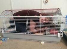 Pet Cage  Rabbits Habitat XLarge