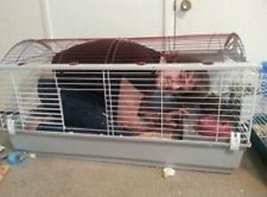 Pet Cage  Rabbits Small Animals House  Habitat XLarge Size