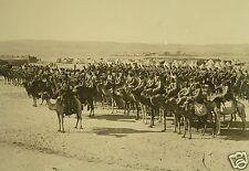 "Ottoman Turkish Camel Cavalry Palestine World War 1, 6x4"" Reprint Photo 1"