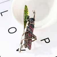 Insect Shape Metal Lapel Pin Popular Accessories Fashion Jewelry Brooch