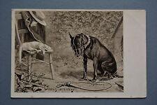 R&L Postcard: Stanley Berkeley, Max Ettlinger, Muzzled Hunting Dog