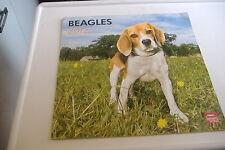 ~BEAGLES~2012 DOG CALENDAR~BROWN TROUT~
