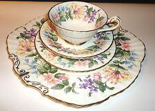 Paragon Platillo de taza de té té placa trío inglés Porcelana Fina país Lane