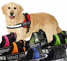 Service Dog Harness Vest 2 Removable label patches for Medium Large Dogs Pitbull
