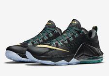 Nike LeBron 12 XII Low SVSM Carbon Fiber Size 13.5 724557-070 what the kyrie bhm
