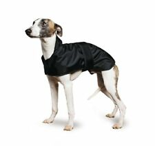 Vêtements et chaussures noires Ancol pour chien