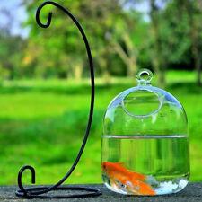 Luxury Hanging Transparent Glass Vases Fishbowl Fish Tanks Charm Aquarium Decor