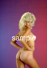 GINGER LYNN VINTAGE NUDE PHOTO 8.5 X 11 QUALITY GUARANTEED OMB!!