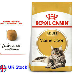 10 KG Royal Canin Maine Coon Adult Special Food Formula